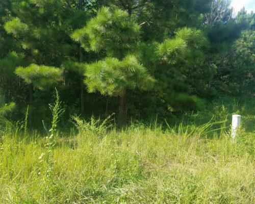 211 Village Lane Woodstock, GA 30188