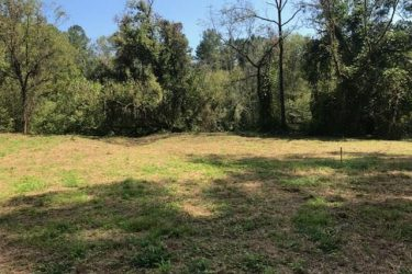 0 Lot 44 Whidby Farm Lane Ball Ground, GA 30107