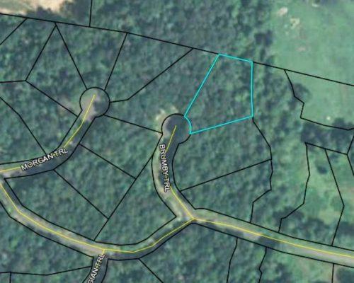 8 Brumby Trail Ellijay, GA 30536