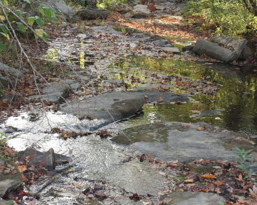 0 North Ball Creek Talking Rock, GA 30175
