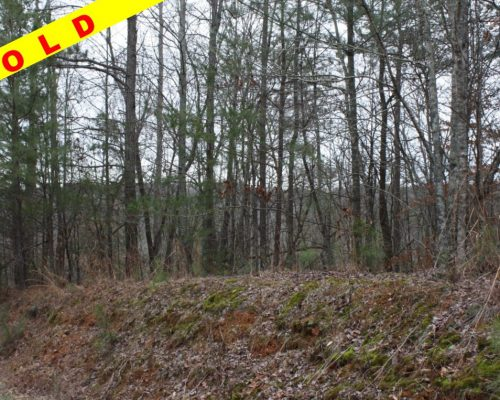 0 Wildcat Creek Road Ellijay, GA 30540